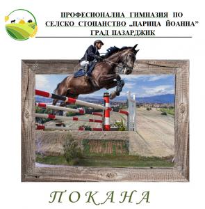 Read more about the article ТОДОРОВДЕН                                     КОНСКИ  ВЕЛИКДЕН
